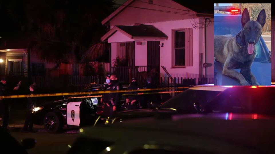 Fatal Officer-Involved Shooting in Oakland Under Investigation; Missing K-9 Found